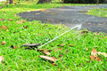 Free Water Sprinkler Stock Photos - 29645913