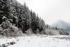 Free Mountain Winter Landscape Royalty Free Stock Photography - 29642297