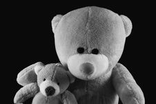 Free Two Teddy Bears Royalty Free Stock Image - 29642426