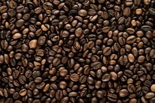 Free Coffe Royalty Free Stock Images - 29653089