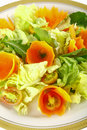 Free Lettuce And Carrot Royalty Free Stock Photo - 29674825