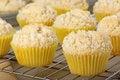 Free Lemon Muffins Cooling Royalty Free Stock Image - 29674926