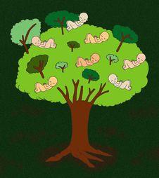 Free Tree Of Life Stock Image - 29675551