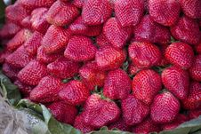Free Red Fresh Strawberries Royalty Free Stock Photos - 29676748