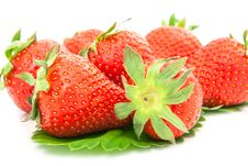 Free Strawberries Berry Royalty Free Stock Photo - 29680745