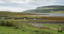 Free Isle Of Skye Stock Image - 29689091