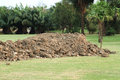 Free Pile Of Soil Stock Photography - 29691452
