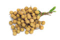 Free Longan Fruit Stock Photography - 29698322