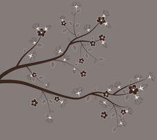 Free Spring Tree. Stock Image - 29693201