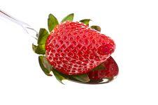 Free Tasty Strawberry Stock Photo - 29696200