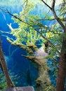 Free Jiuzhaigou Scenic Area Stock Photos - 2971163