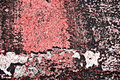 Free Grunge Painted Brick Wall Royalty Free Stock Photos - 2978308