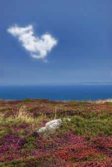 Free Raz Point In Britany Stock Photos - 2970533