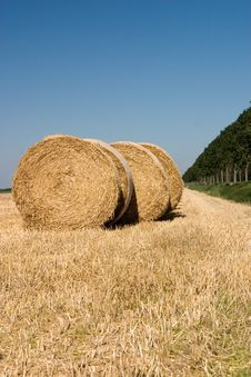 Free Rolls Of Hay Royalty Free Stock Photos - 2974518