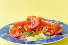 Free Tomato-lettuce Salad With Seed Royalty Free Stock Photography - 2975097