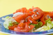 Free Tomato-lettuce Salad With Seed Royalty Free Stock Photo - 2975105