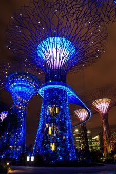 Garden By The Bay12 Royalty Free Stock Photography