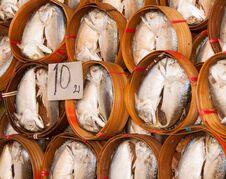 Free Fish Royalty Free Stock Photography - 29708097