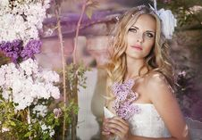 Free Beautiful Bride Royalty Free Stock Photography - 29709177