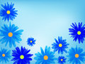 Free Beautiful Flower Background Royalty Free Stock Photography - 29711337