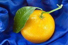 Ripe Orange On Blue Stock Images
