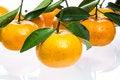 Free Tangerine Stock Image - 29723491