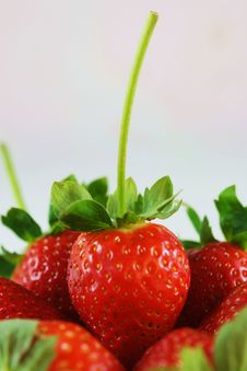 Strawberries Close-up Stock Images