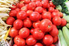 Free Tomatoes Royalty Free Stock Photo - 29728405