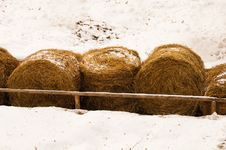 Free Row Of Haystacks Royalty Free Stock Photos - 29728858