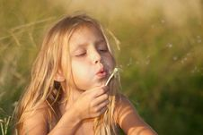 Free Girl With Dandelion Stock Photography - 29729342