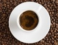 Free Cup Of Coffee On Coffee Beans Background Stock Images - 29738054
