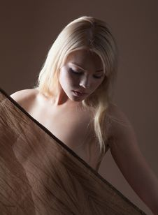 Free Sheer Fabric Stock Photography - 29738452