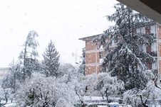 Free Snow In La Spezia Stock Photos - 29738913