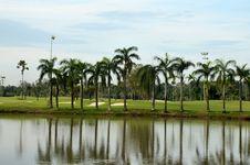 Free Lake, Sand Traps, Palm Trees & Golf Stock Photos - 29744593