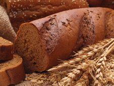 Free Fresh Bread Royalty Free Stock Photo - 29765395