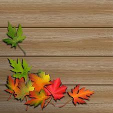 Free Autumn Leaves Stock Image - 29765831
