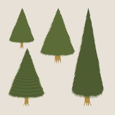 Various Fir-trees Royalty Free Stock Images
