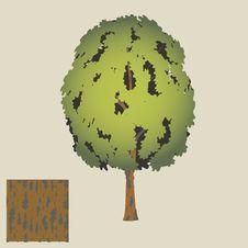 Free Abstract Green Tree Stock Photo - 29767040