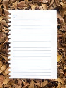 Free Notebook Paper On Leaves. Royalty Free Stock Photography - 29771317