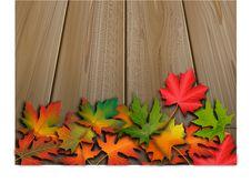 Free Autumn Leaves Royalty Free Stock Photo - 29776145