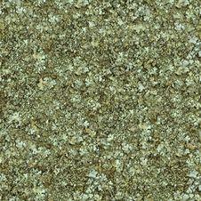 Free Moss Seamless Texture. Stock Photo - 29780180