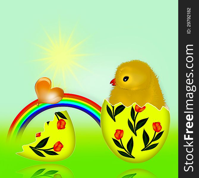 Newborn chicken and the egg.