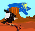 Free Andean Condor Perching Stock Photo - 2986050