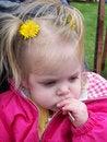 Free Dandelion Princess Royalty Free Stock Image - 2987116