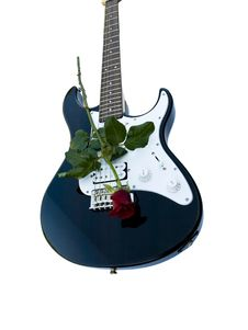 Free Guitar And Rose Stock Images - 2981684