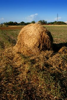 Broken Hay Bale On The Field Stock Photos