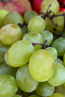 Free Grapes - Macro Photo Royalty Free Stock Photography - 2982667