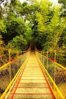 Free Hanging Bridge To Forest Royalty Free Stock Images - 2983389