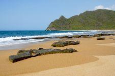 Tropical Caribbean Rocky Beach Stock Photo