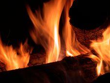 Free Campfire Royalty Free Stock Photos - 2986088